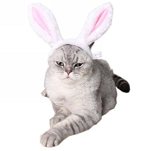 Ztl Cute Kaninchen Bunny Ohren Kopfband für Hund Katze Haustier Halloween Weihnachten Party Kostüm Zubehör, S, - Weißen Bunny Kostüm