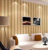 Einfache moderne gestreifte Vliestapete Büro Restaurant Wohnzimmer voll TV Hintergrundbild, Kaffee Gold 10 * 0,53 m