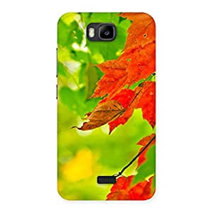 Delighted Leaf Multicolor Back Case Cover for Honor Bee