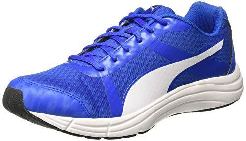 PUMA Men's Voyager IDP Royal White Running Shoes-8 UK/India (42 EU) (4060981249214)