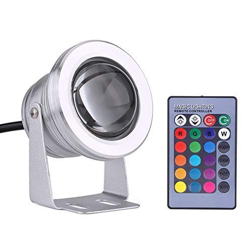 Unterwasser LED Spot Licht-10W 12V LED wasserdichtes Unterwasser Spot Licht RGB Farbwechsel Outdoor LED Flutlicht for Marine Boot Teich Aquarium (Farbe : Silber) - Lichter Led-unterwasser-boot