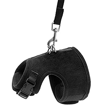 HOMIMP Harnais réglable anti-évasion et laisse pour chat - gilet réglable doux, harnais pour chats - Noir