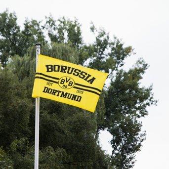 Borussia Dortmund BVB 17130500 Hissfahne 150x100cm mit Logo/Schriftzug, Schwarz/gelb, 150 x 100 x 1 cm