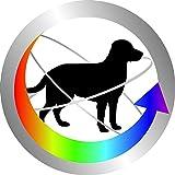 Gimdog Multi-Vitamin-Paste, 1er Pack (1 x 50 g) - 4
