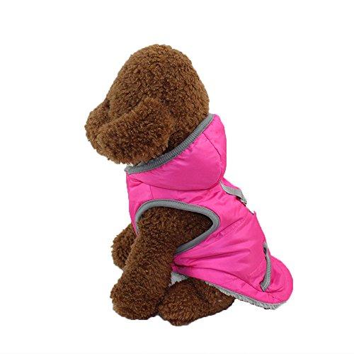 Hundemantel Hundejacke Hund Warm Winter Hundeweste Hundebekleidung Kostüm für Kleine und mittlere Hunde(Hot Pink,S)