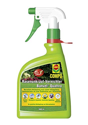 COMPO Rasenunkraut-Vernichter Banvel Quattro AF 1 l - Gegen Zweikeimblättrige Unkräuter im Rasen