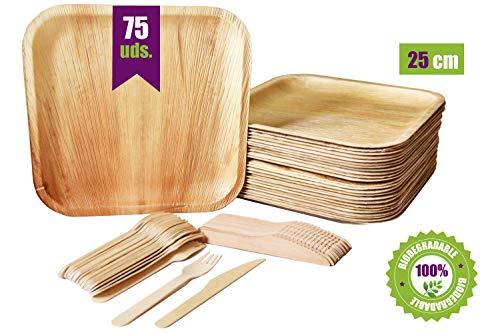 GoBeTree Vajilla desechable de 75 piezas, 25 platos de hoja de palma cuadrados, juego de cubiertos de madera abedul de 25 tenedores y 25 cuchillos, vajilla rustica y elegante, vajilla biodegradable