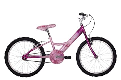 Raleigh Extreme Girls' Wave Youth Mountain Bike - Pink/Purple, 20 Inch