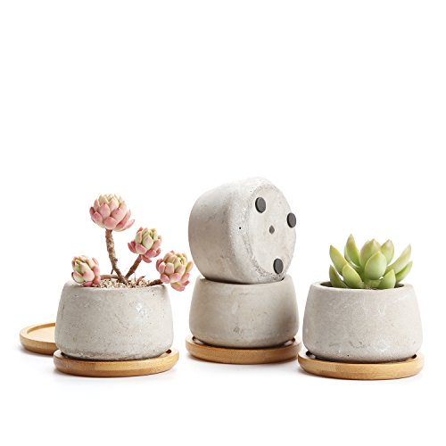 t4u rachel's 6.5cm seriale di cemento succulento cactus pentole vegetali vasi di fiori fioriere contenitori scatole di finestra con vassoio di bambù piccola forma rotonda grigio, pacchetto di 4