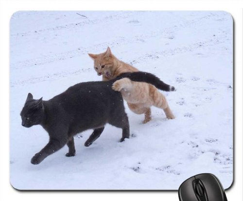 Feline Frenzy! Mouse Pad, Mousepad (Cats Mouse Pad) (Frenzy Cat)