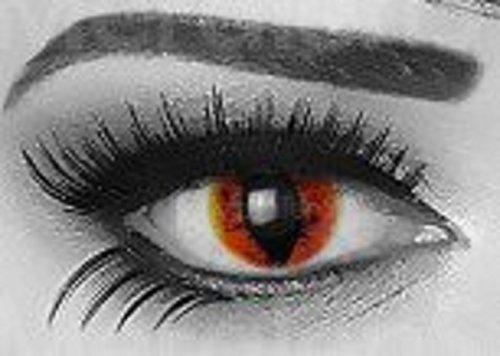 Funnylens 1 Paar farbige Crazy Fun manticor Jahres Kontaktlinsen. perfekt zu Halloween, Karneval, Fasching oder Fasnacht mit gratis Kontaktlinsenbehälter ohne (Kostüm Eye Saurons)