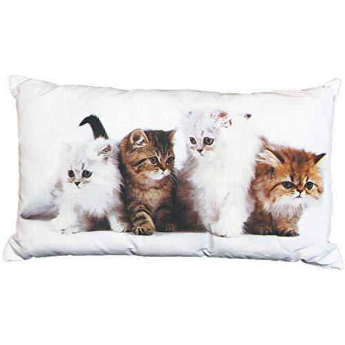 SIDCO Kissen Katze Kätzchen Dekokissen Kuschelkissen Tierkissen Sofakissen Couchkissen