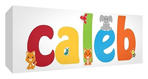 15 x 42 cm, Multicoloured: Feel Good Art Gallery Wrapped Nursery Box Canvas with Solid Front Panel Rectangle Design Cute Illustrations and Personalised with Boy's Name (15 x 42 x 4 cm, Small, Caleb)