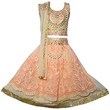 Sky Heights Girls' Net Party Wear Lehenga Choli/Ghagra (Ethnic Wear Dress for Kids)