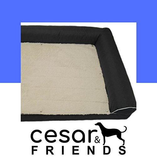 Orthopädisches Hundebett Cesar&Friends, Orthopädische Hundematratze Alpha XXL, Grau, Größe 120x80x25cm mit Memory Visco-Schaummatratze, Bezug abnehmbar und bei 30 Grad waschbar, wasserfest