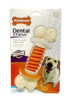 Nylabone Pro-Action Dental Chew, Small