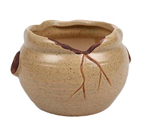 Pots Ceramique Bleu