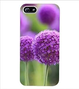 ColourCraft Lovely Flower Design Back Case Cover for APPLE IPHONE 5S