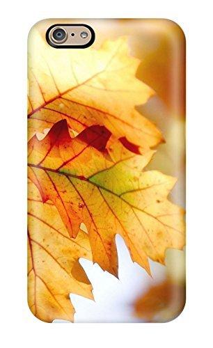 New Style Jerrifsanchez Autumn leaves close-up Premium