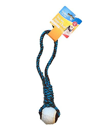 Rope n Ball Gioco per Cane con Corda e Pallina - Esercizio ed Educazione per Cucciolo - Lunghezza Fune: 32 cm