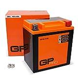 GP-PRO GB10L-B 12V 11Ah GEL-Batterie (Ähnlich YB10L-B / YB10L-B2) (Wartungsfrei & Versiegelt) Akkumulator Motorrad Roller Motorradbatterie Rollerbatterie