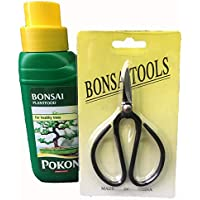 Bonsai Tree 2 Piece Care Set - Scissors and Feed