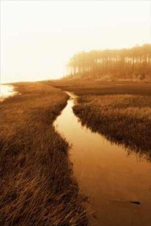 (Marsh Isola)