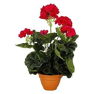 MICA Decorations 975226 – Flores, geranios Grandes, Color Rosa