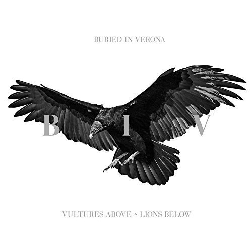 Vultures Above Lions Below by Imports