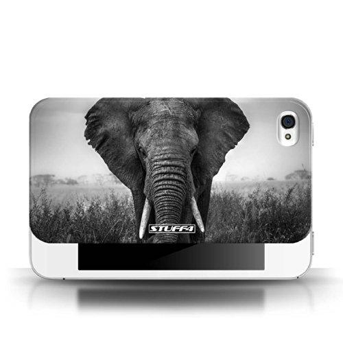 Stuff4 Hülle / Hülle für Apple iPhone 4/4S / Wolf Muster / Zoo-Tiere Kollektion Elefant