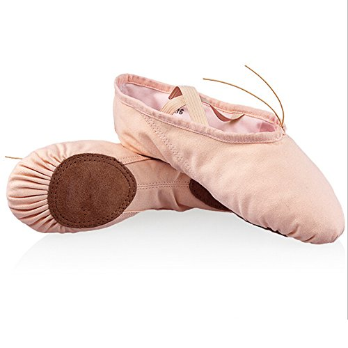 lisianthus002Little Mädchen Classic Ballett üben Schuhe (Little Kid) Rose