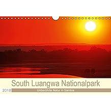South Luangwa Nationalpark (Wandkalender 2018 DIN A4 quer): Reiche Tierwelt, unberührte Natur in Sambia (Monatskalender, 14 Seiten ) (CALVENDO Orte) [Kalender] [Jun 06, 2017] Woyke, Wibke