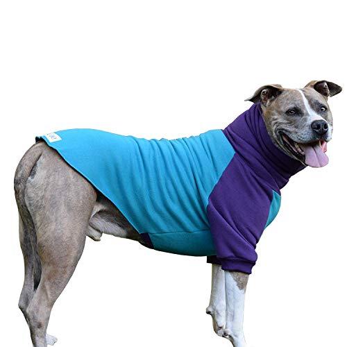 Tooth & Honey Zahn & Honig Hund Pullover/Pitbull/Großer Hund/französische Bulldogge/Colorblock Sweatshirt/Pullover, Extra Large