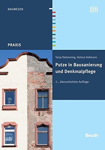 Putze in Bausanierung und Denkmalpflege (Beuth Praxis)
