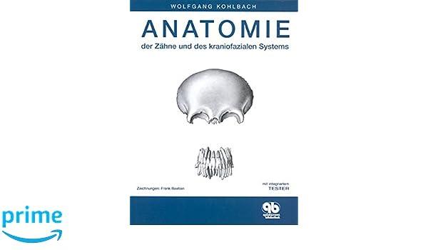 Anatomie der Zähne und des kraniofazialen Systems: Amazon.de ...