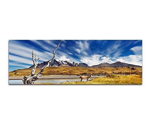 Bilder Wand Bild - Kunstdruck 120x40cm Chile Patagonien Nationalpark Landschaft