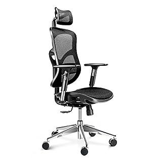 Diablo V-Basic Silla de oficina ergonómica, silla de confort, malla transpirable, reposabrazos ajustables, altura ajustable, opción de color