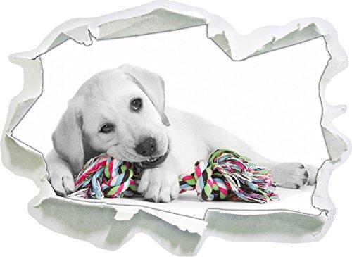 cucciolo di labrador che giocano in bianco, carta da parati 3D formato nero / autoadesivo: 92x67 cm decorazione della parete 3D Wall Stickers parete decalcomanie
