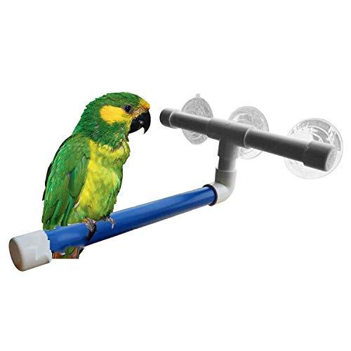 Hypeety Pet Parrot Bad Sitzstangen stehend Plattform Rack Saugnapf Fenster Dusche Bird Bad Toys