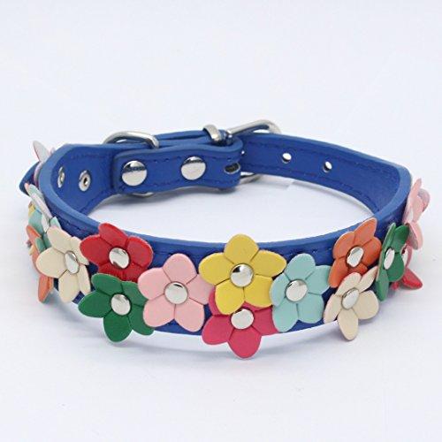 DWODNJAJ Haustier Kragen, Blume Hundehalsband, Hund Kette Training Kragen, tiefes Blau, S 2.5 * 37 (cm)