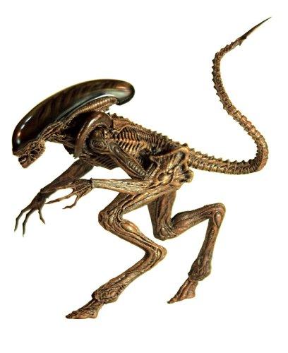 "[Movie Masterpiece] ""Alien 3"" 1/6 scale figure Alien Dog (japan import) 2"