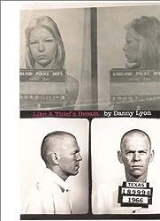 Like a Thief's Dream by Danny Lyon (2007-09-15)