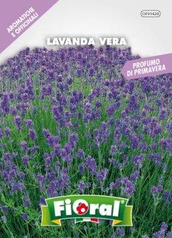 Sementi di piante aromatiche e officinali in bustina ad uso amatoriale (lavanda vera)