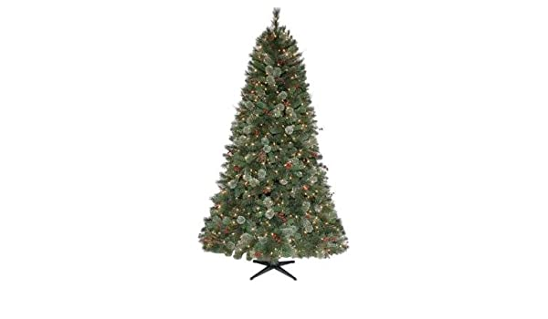 Martha Stewart Living 7 5 Pre Lit Paley Pine Christmas Tree Amazon
