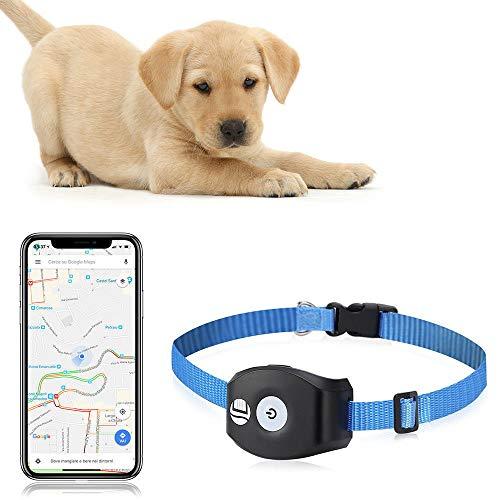 QNMM Mini Mascota Dispositivo de rastreo Anti-pérdida Inteligente Cuello del buscador de Mascotas a Prueba de Agua Impermeable/Alarma/Seguimiento en Tiempo Real/Monitor de Voz