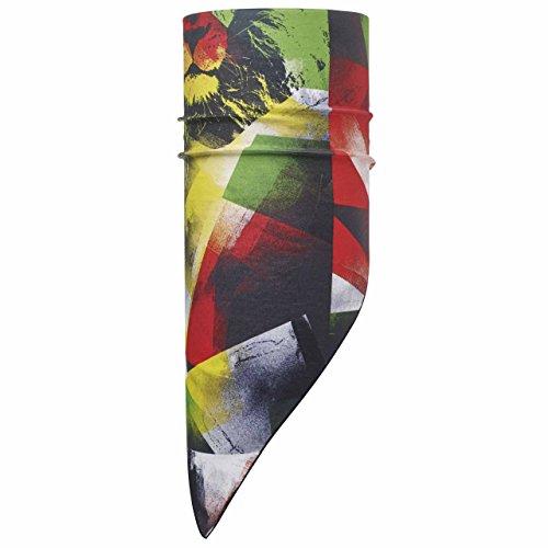 Buff Erwachsene Multifunktionstuch COOL BANDANA LION KING MULTI, Mehrfarbig - Red/Yellow/Green/Black, One size, 111488.555.10.00