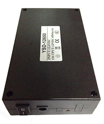 Batterie Ricaricabili Li-ion DC 12V 6500mah Ioni di Litio con Caricabatterie EU