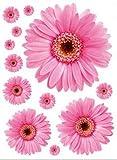 ALLDOLWEGE Einfache Zimmer Wohnzimmer Gelb Kind chrysanthemum flower Poster tv Schlafsofa vor dem Hintergrund Fenster Badezimmer Wand MountThatThe pink Daisy
