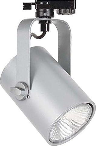 LTS Licht&Leuchten Strahler TOR 11.7502 si PAR30 E27 75W Torpedo