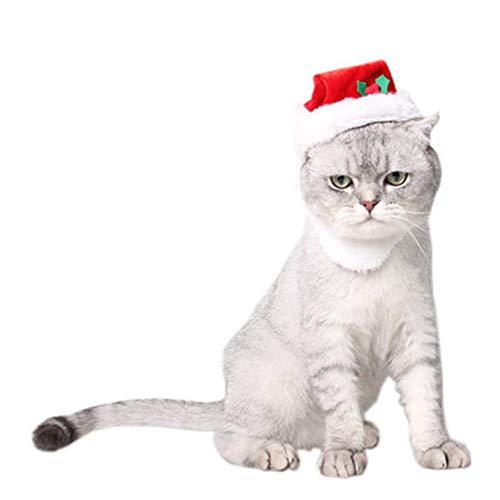 die europäischen und amerikanischen weihnachtsmann bärtige Hund Hut Festival Kleid aus Komfortablen Katze weihnachtsmütze
